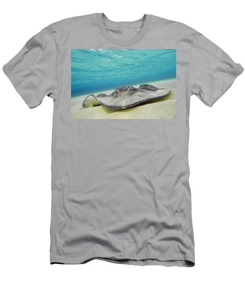 Men's T-Shirt (Athletic Fit) featuring the photograph Stingrays Under Water by Adam Romanowicz