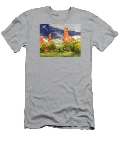 Strawberry Pinnacles Men's T-Shirt (Slim Fit) by Sherril Porter