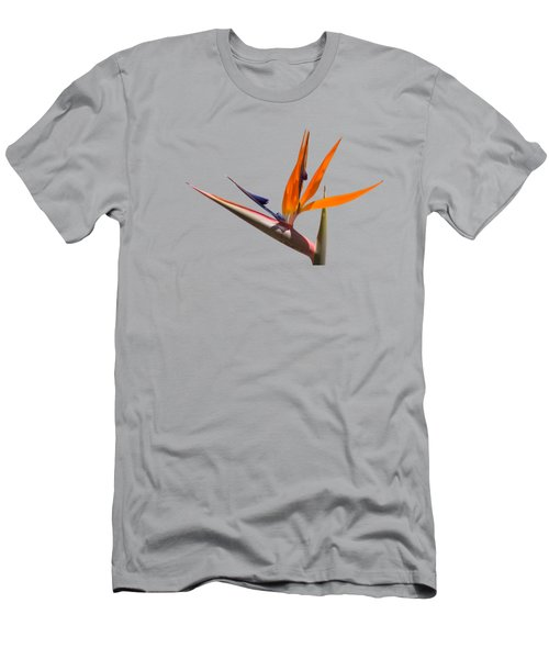 Strelitzia  Men's T-Shirt (Athletic Fit)