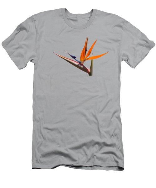 Strelitzia  Men's T-Shirt (Athletic Fit)