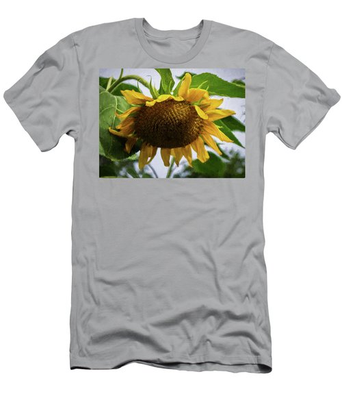 Sunflower Art II Men's T-Shirt (Athletic Fit)