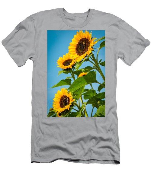 Sunflower Morning Men's T-Shirt (Athletic Fit)