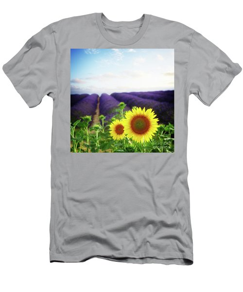 Sunrise Over Sunflower And Lavender Field Men's T-Shirt (Slim Fit) by Anastasy Yarmolovich
