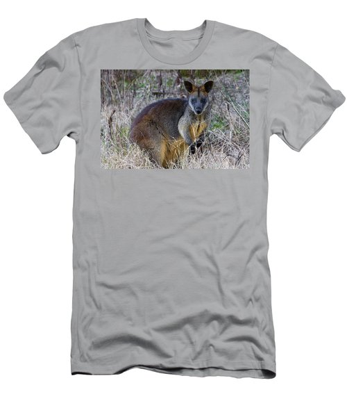 Men's T-Shirt (Athletic Fit) featuring the photograph Swamp Wallaby  by Miroslava Jurcik
