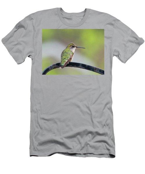 Taking A Rest Men's T-Shirt (Athletic Fit)