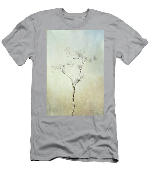 Tall Tree Men's T-Shirt (Athletic Fit)