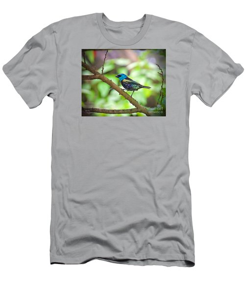 Men's T-Shirt (Slim Fit) featuring the painting The Blue Necked Tanager by Judy Kay