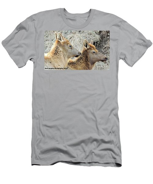 The Elk Of Winter  Men's T-Shirt (Athletic Fit)