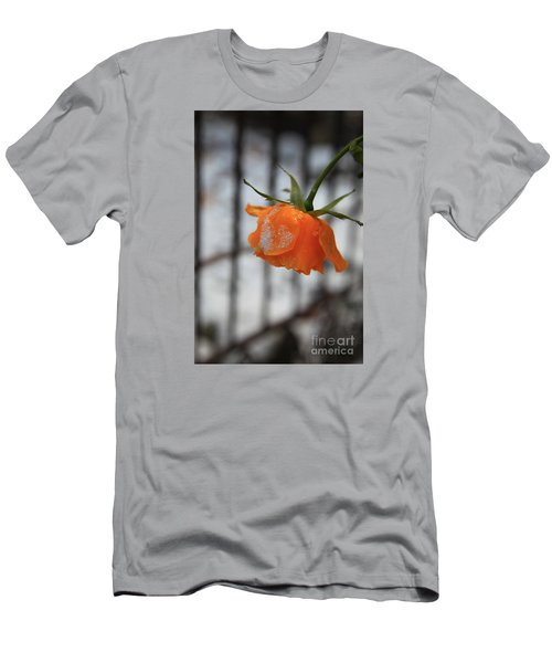 Men's T-Shirt (Slim Fit) featuring the photograph The Last Rose Of Summer by Jeanette French