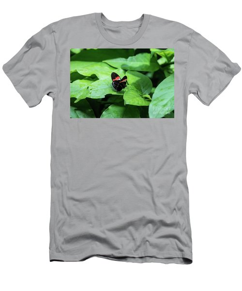 The Leaf Is My Plate Men's T-Shirt (Athletic Fit)