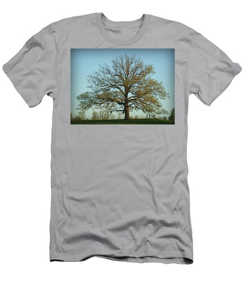 The Mighty Oak In Spring Men's T-Shirt (Athletic Fit)