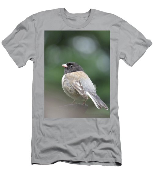 This Little Bird 2 Men's T-Shirt (Athletic Fit)