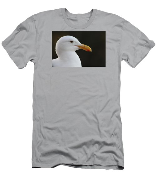 Thoughtful Gull Men's T-Shirt (Athletic Fit)