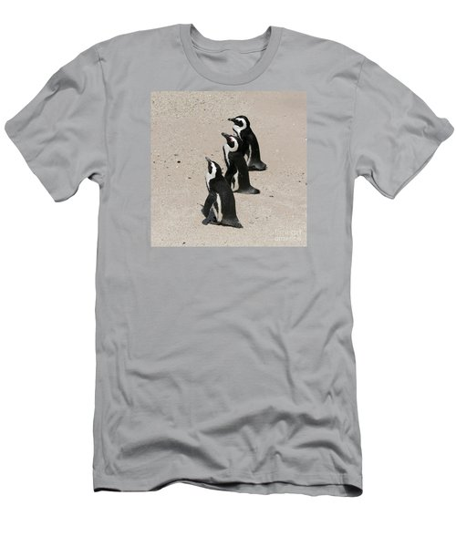 Three African Penguins Men's T-Shirt (Athletic Fit)