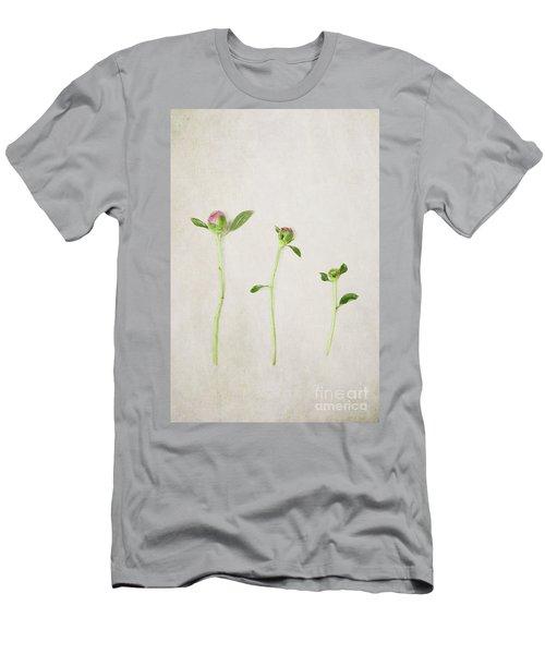 Three Buds Men's T-Shirt (Slim Fit) by Stephanie Frey