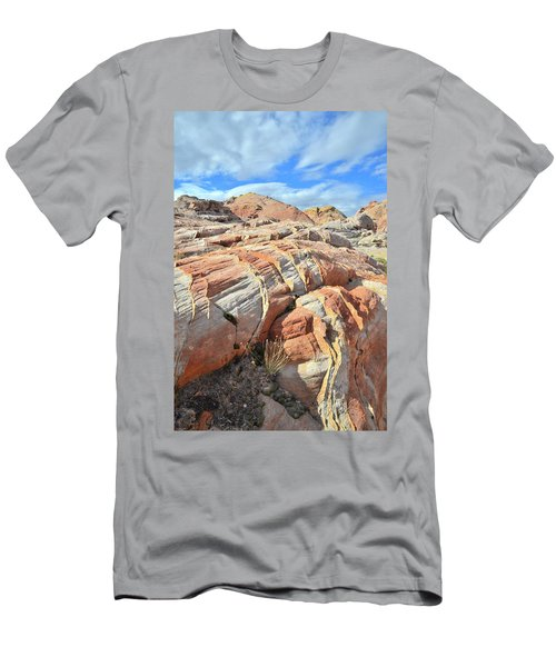Tiger Stripes In Valley Of Fire Men's T-Shirt (Slim Fit) by Ray Mathis