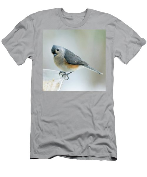 Titmouse With Walnuts Men's T-Shirt (Athletic Fit)