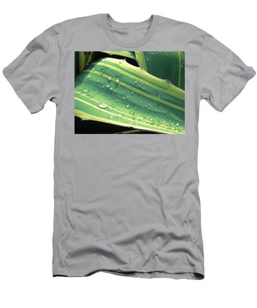 Toboggan Men's T-Shirt (Athletic Fit)