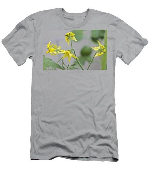Tomato Babies 1 Men's T-Shirt (Athletic Fit)