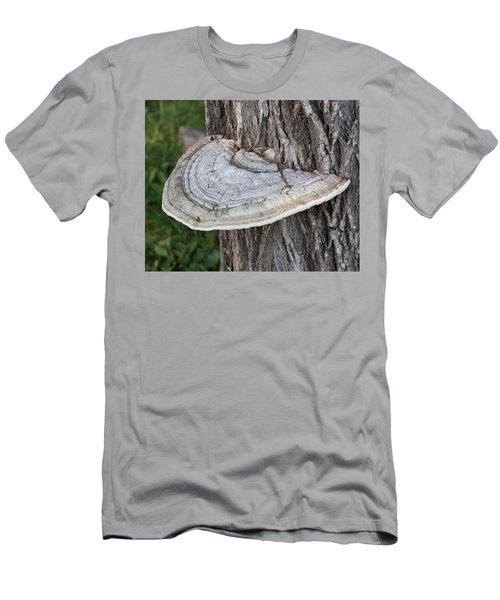 Tree Fungus Men's T-Shirt (Athletic Fit)