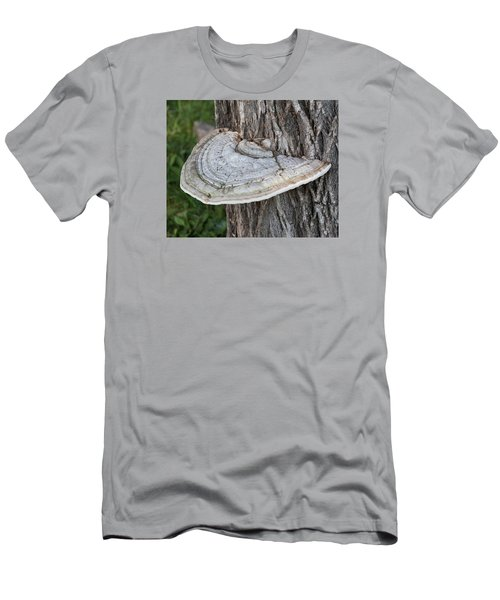 Tree Fungus Men's T-Shirt (Athletic Fit)
