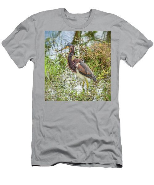 Tri-colored Heron Men's T-Shirt (Athletic Fit)
