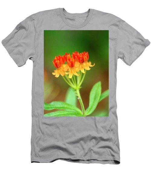 Tropical Milkweed Men's T-Shirt (Athletic Fit)