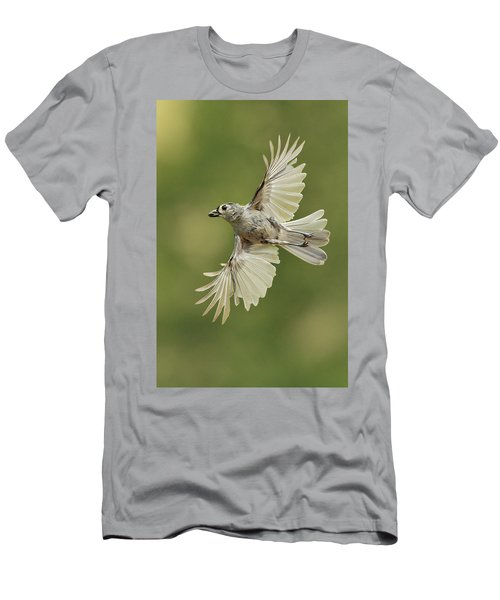 Tufted Titmouse In Flight Men's T-Shirt (Slim Fit) by Alan Lenk
