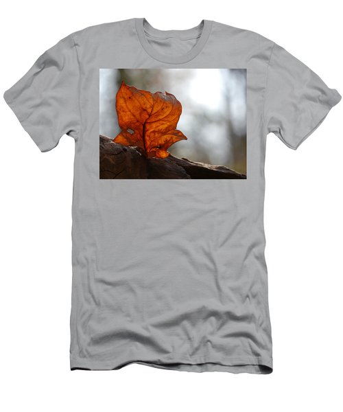 Tulip Leaf  Men's T-Shirt (Slim Fit) by Jane Ford