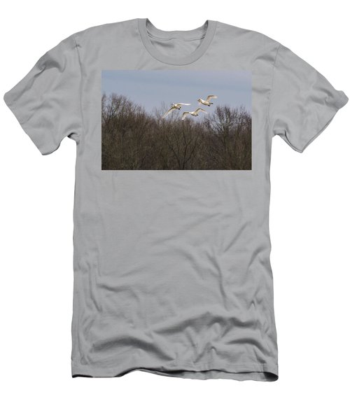 Tundra Swan Trio Men's T-Shirt (Slim Fit)