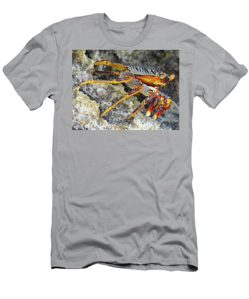 Turtle Bay Resort Watamu Kenya Rock Crab Men's T-Shirt (Athletic Fit)