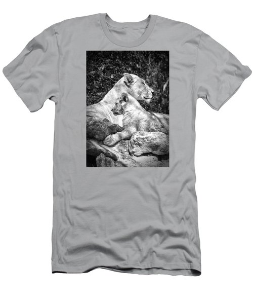 Twin Sphinx Men's T-Shirt (Athletic Fit)