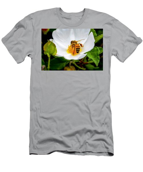 Vacaville Honey Bee Men's T-Shirt (Athletic Fit)
