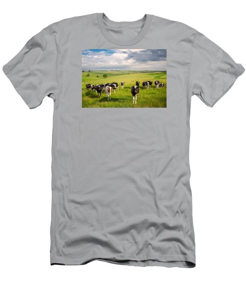 Valley Of The Cows Men's T-Shirt (Athletic Fit)