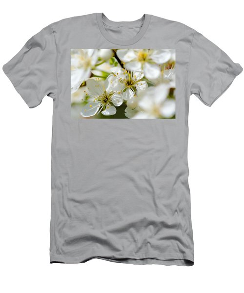 Vermont Apple Blossoms Men's T-Shirt (Athletic Fit)