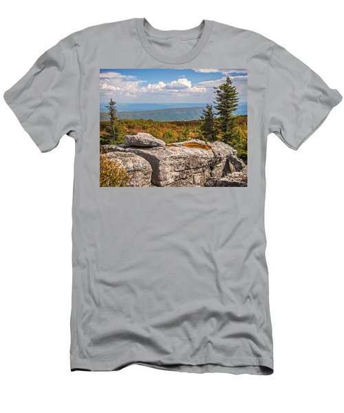 View From Bear Rocks 4173c Men's T-Shirt (Athletic Fit)