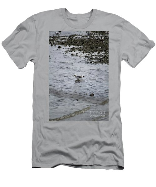 Wading Gull Men's T-Shirt (Athletic Fit)