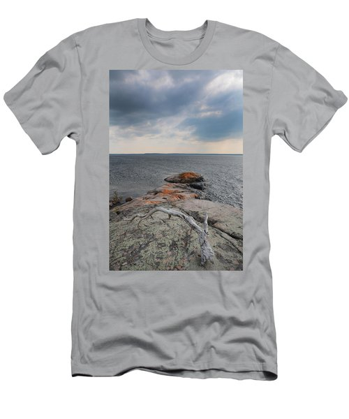 Wall Island Lichen Driftwood 3640 Men's T-Shirt (Athletic Fit)