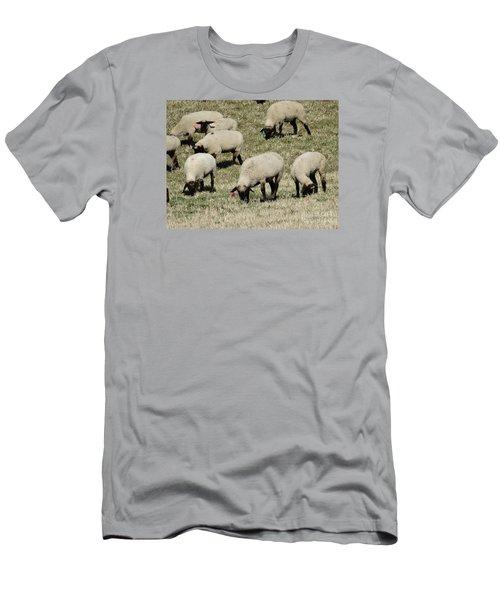 Wandering Wool Men's T-Shirt (Slim Fit) by J L Zarek