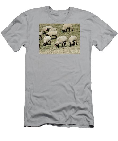 Wandering Wool Men's T-Shirt (Athletic Fit)