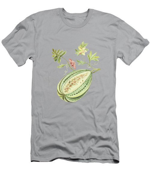 Watermelon With Leaves And Butterfly By Cornelis Markee 1763 Men's T-Shirt (Athletic Fit)