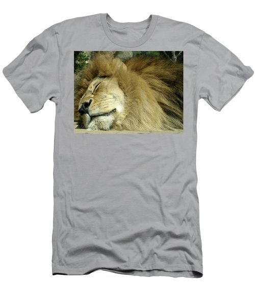 We All Like To Pass As Cats Men's T-Shirt (Athletic Fit)
