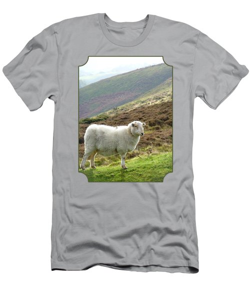 Welsh Mountain Sheep Men's T-Shirt (Slim Fit) by Gill Billington
