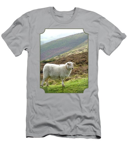 Welsh Mountain Sheep Men's T-Shirt (Athletic Fit)