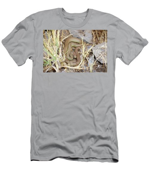 Western Yellow-bellied Racer, Coluber Constrictor Men's T-Shirt (Athletic Fit)