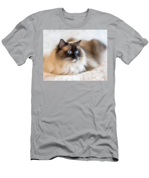 What Does She See Men's T-Shirt (Athletic Fit)