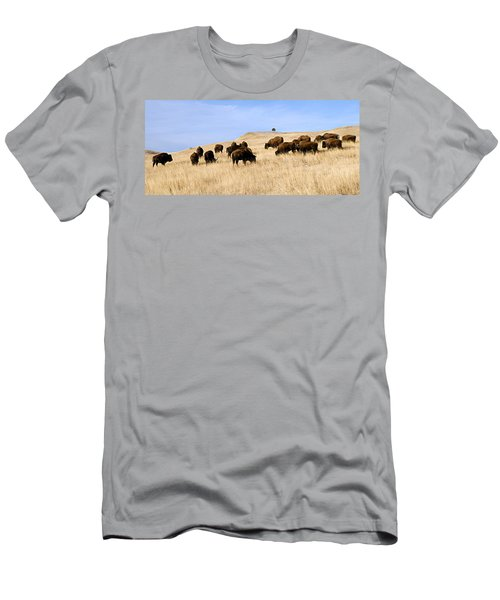 Where The Buffalo Roam Men's T-Shirt (Athletic Fit)