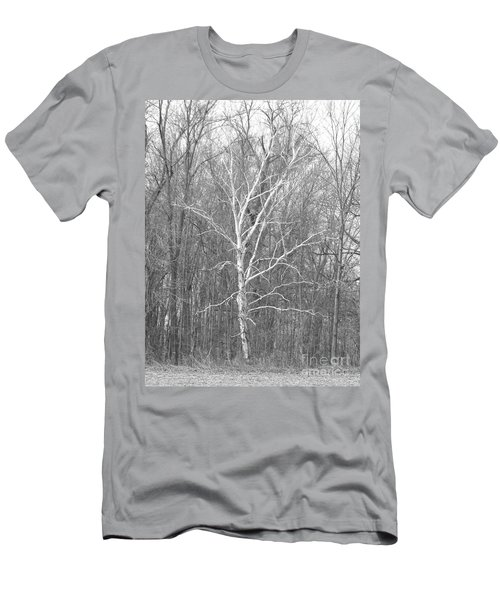White Birch In Bw Men's T-Shirt (Athletic Fit)