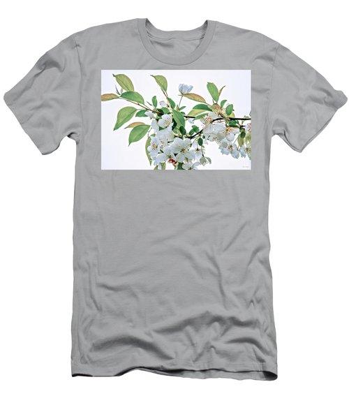 White Crabapple Blossoms Men's T-Shirt (Athletic Fit)