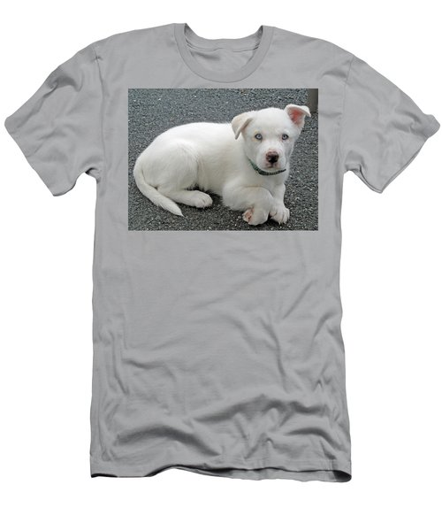 White Dog Blue Eyes Men's T-Shirt (Athletic Fit)